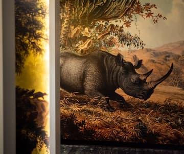 David Livingstone Birthplace Exhibition