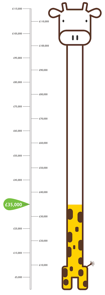 Giraffe Target infograph for Play Park Fund raising