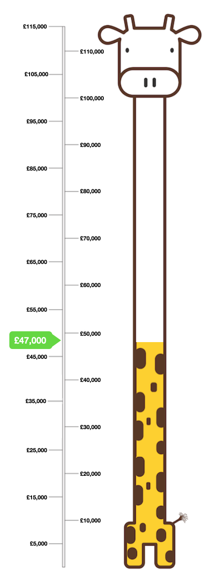 Giraffe Target Infographic for Play Park Fund Raising